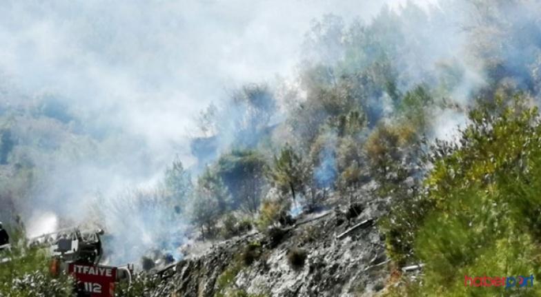 Dalaman ve Milas'tan sonra şimdi de Fethiye yanıyor