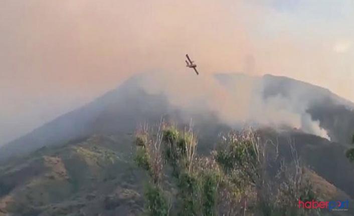 İtalya'da yanardağ felaketi! Stromboli yanardağı 1 kişinin hayatına mal oldu