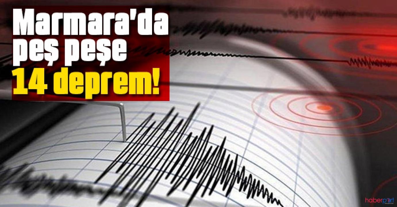 Marmara Denizi'nde art arda 14 deprem kaydedildi