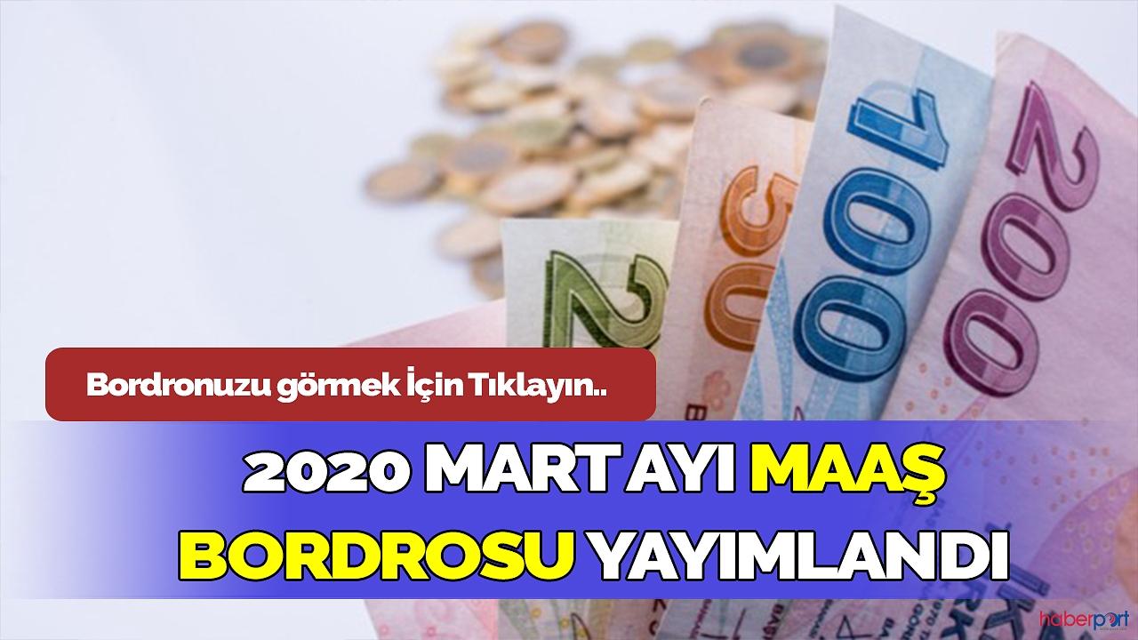 Kamu çalışanları dikkat! 2020 yılı mart ayı maaş bordrosu yayımlandı