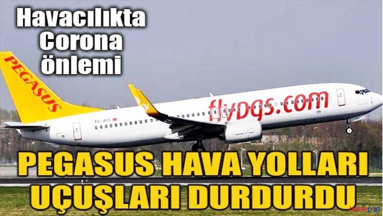 Pegasus Hava Yolları, tüm yurt içi seferlerini iptal etti