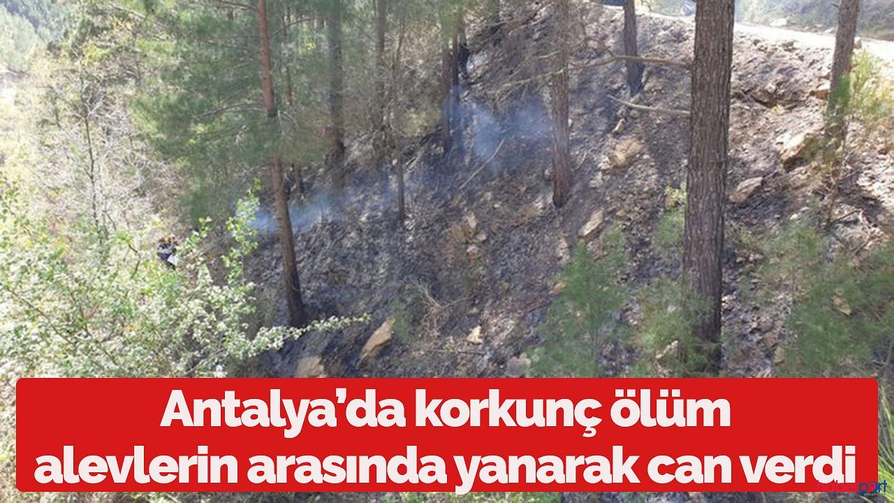Antalya'da feci ölüm! Alevlerin arasında kalarak can verdi