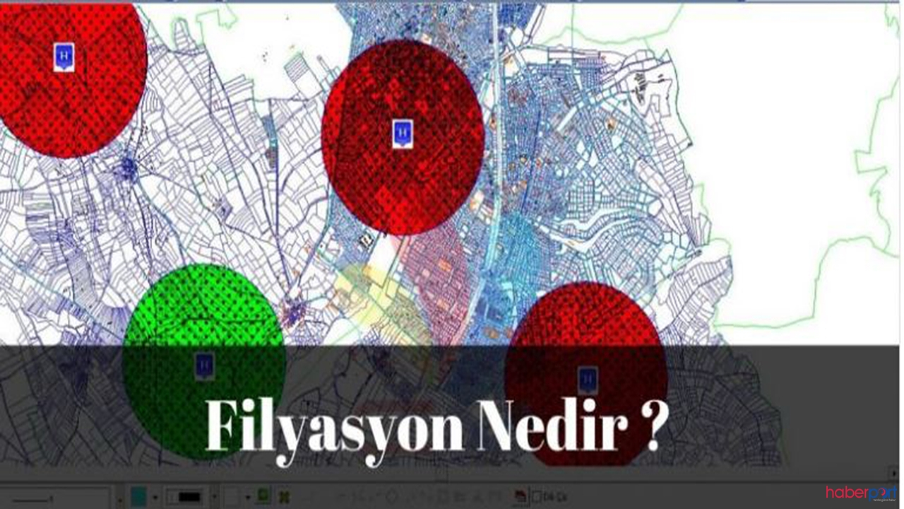 Filyasyon nedir? Filyasyon ne anlamda kullanılır?Filyasyon ne demektir?