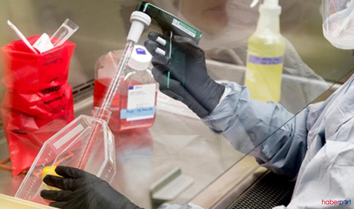 Koronavirüs tahlil bilgilerini Bakanlığa göndermeyen iki laboratuvara soruşturma!