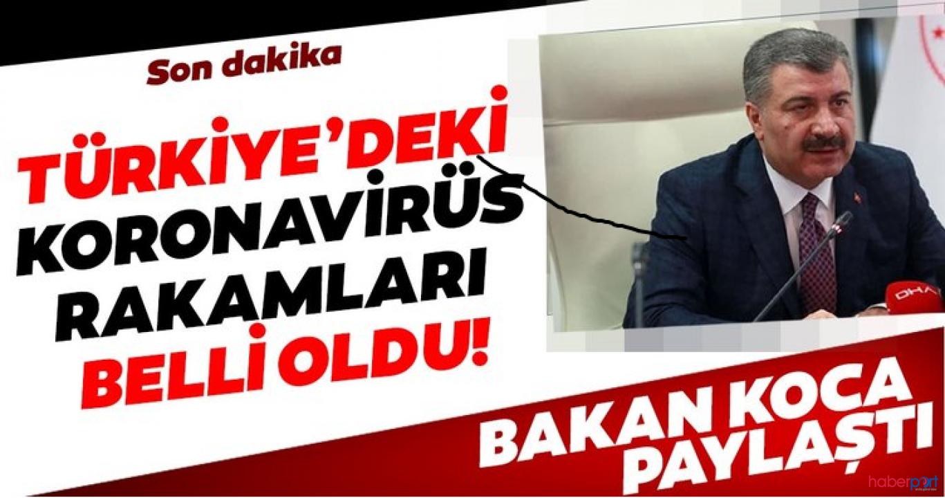 Türkiye'de koronavirüsünden ölenlerin sayısı 2 bin 17'ye yükseldi; son 24 saatte 127 yeni can kaybı