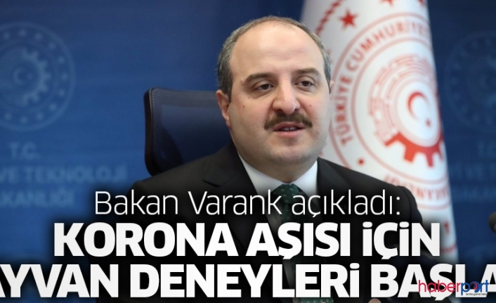 Bakan Varank; Virüse karşı 3 üniversite aşı testlerine başladı