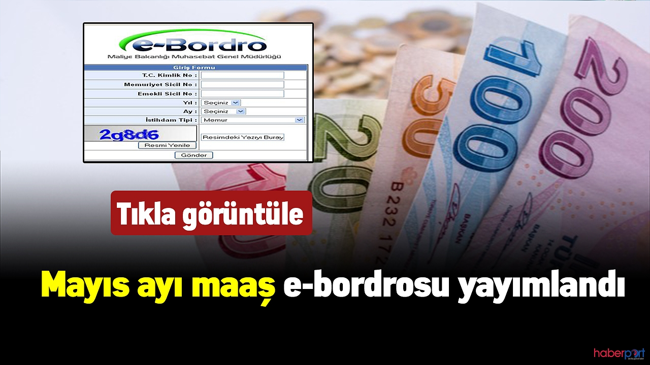 Devlet memurları için mayıs ayı maaş e-bordrosu yayımlandı