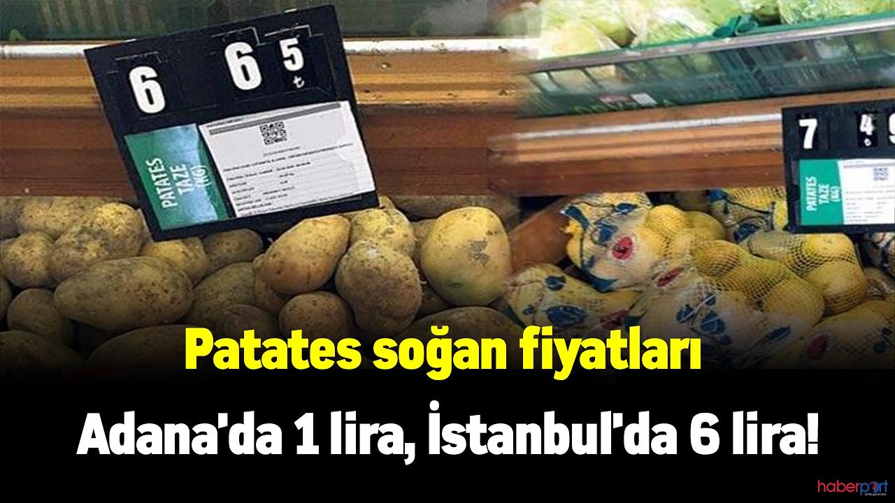 Patates ve soğan'daki tarladan tezgaha değişen fiyat şaşırtıyor!