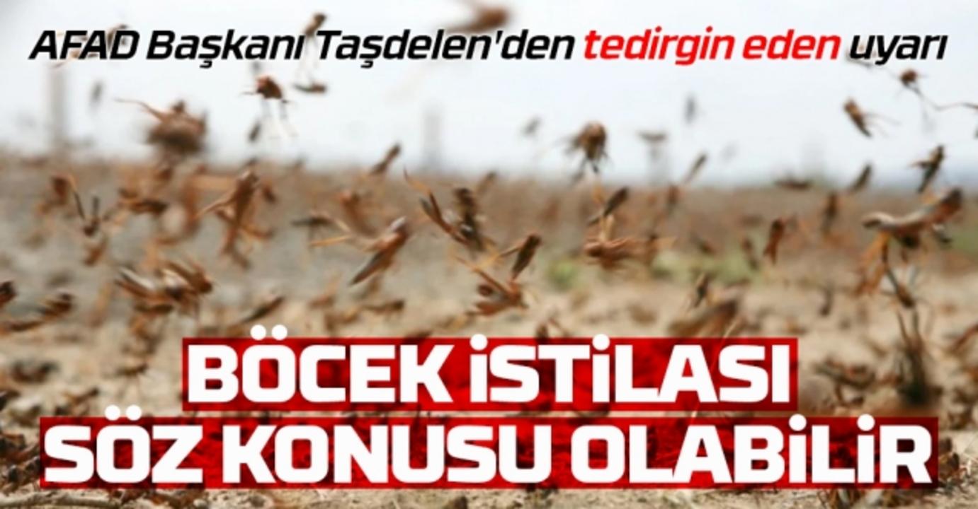 AFAD başkanı Taşdelen: İklim değişimi 'böcek' yaratıyor!