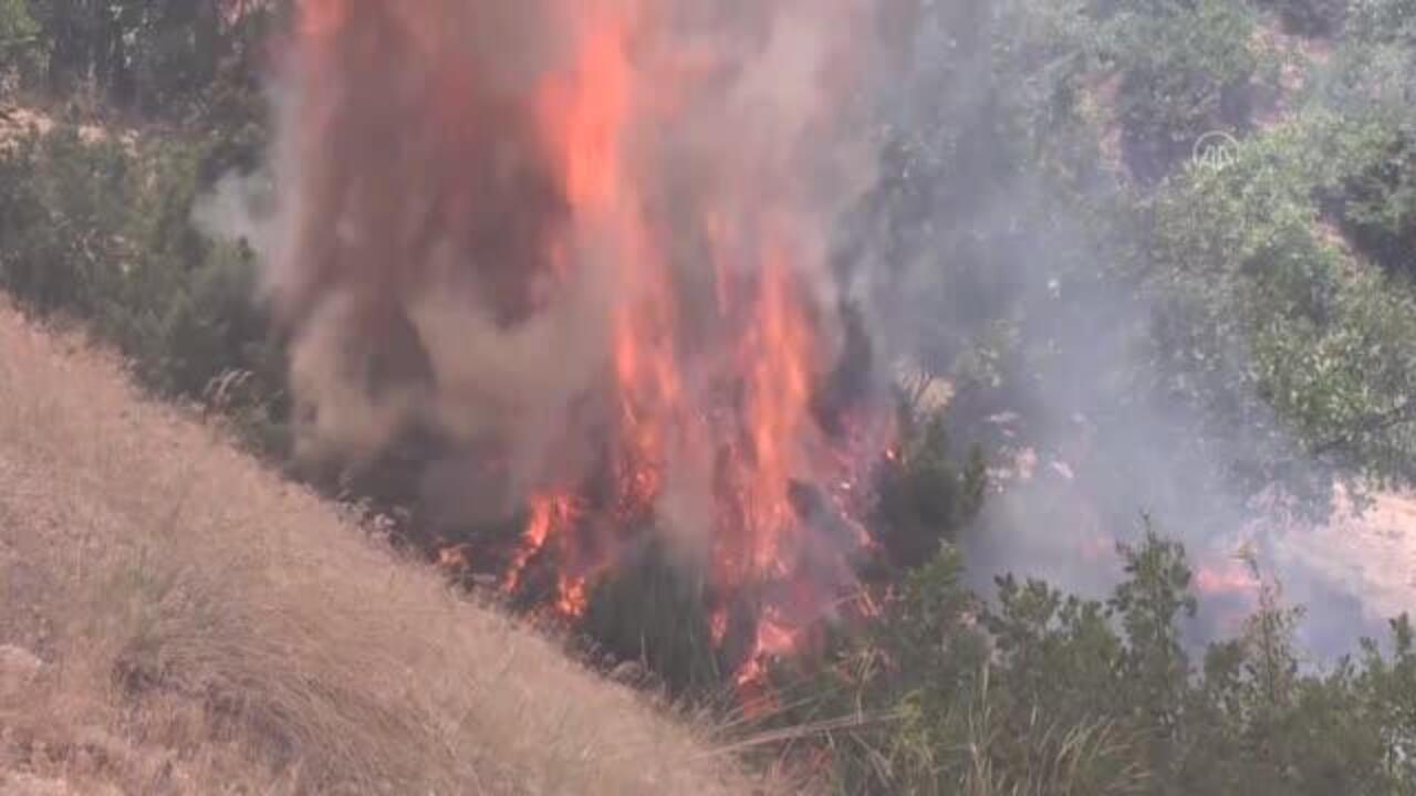Bingöl ormanında yangın devam ediyor!