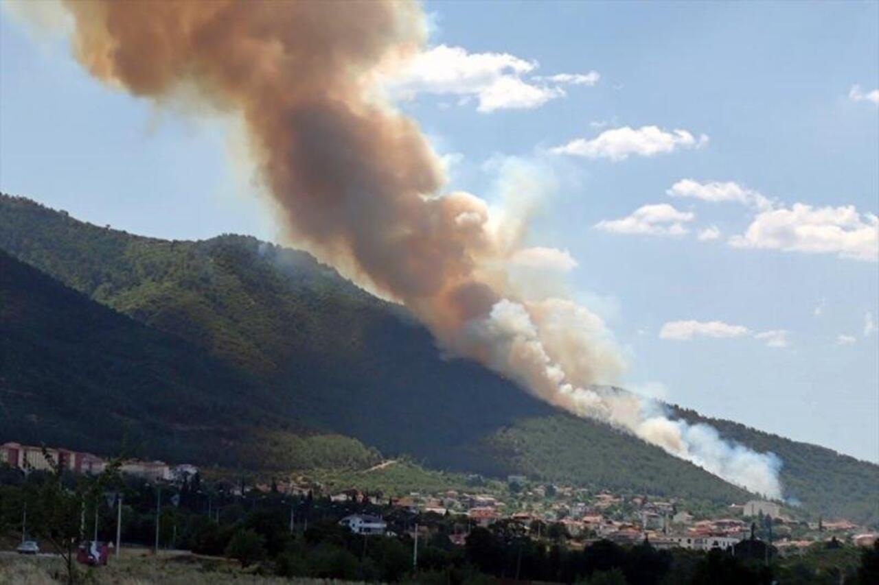 Denizli'de korkutan yangın! Söndürme alışmaları devam ediyor