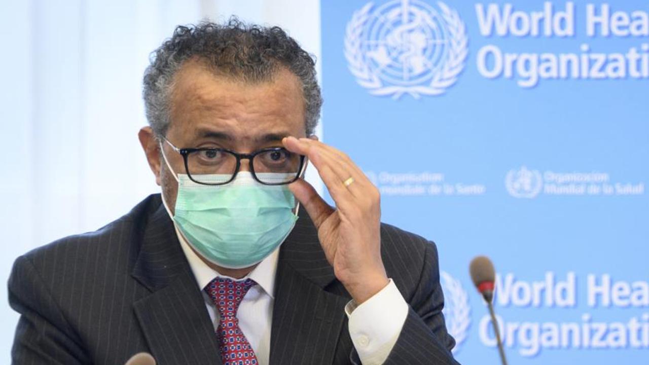 DSÖ : Gine'de Ebola salgını sona erdi