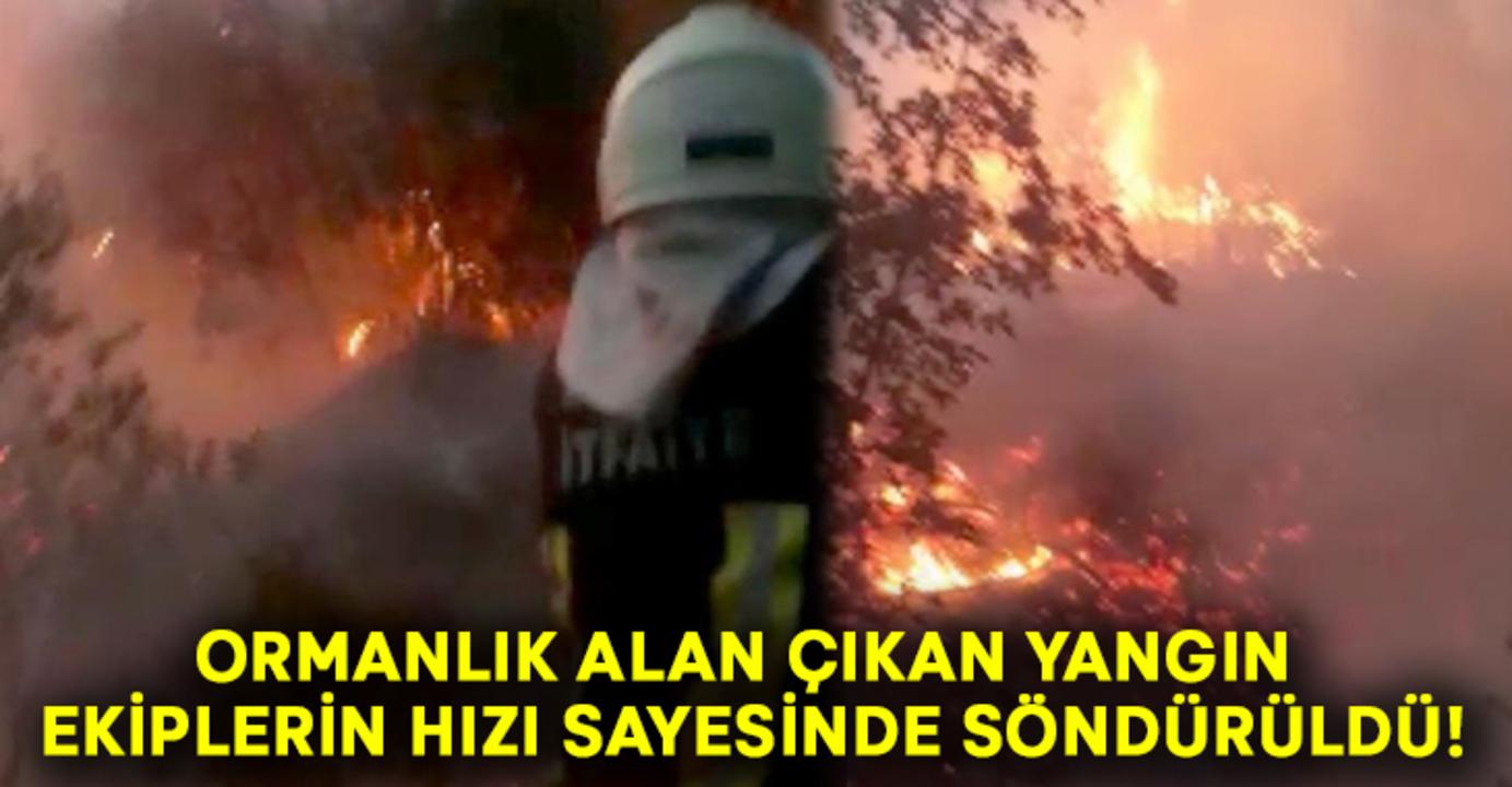 Fethiye'de çıkan orman yangını söndürüldü! Yangında 2 dönüm arazi zarar gördü!