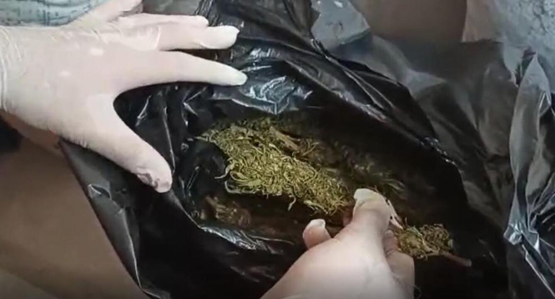Gaziantep'te bağ evine uyuşturucu baskını: 10 kilo 880 gram esrar ele geçirildi!