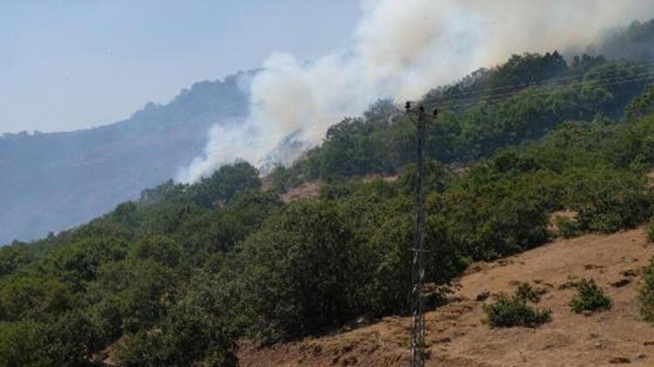Bingöl'de orman yangını