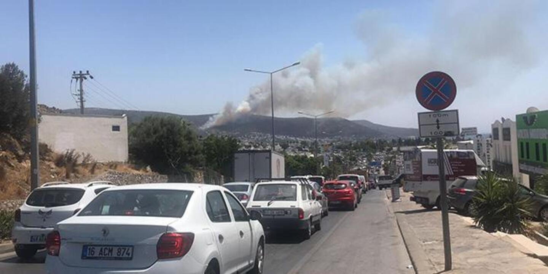 Bodrum'da makilik ve ormanlık alanda yangın çıktı