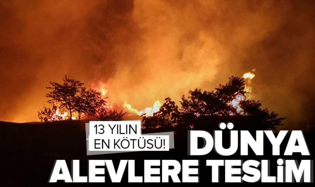 Dünya yangınlar açısından 13 yılın en kötü dönemini yaşıyor!