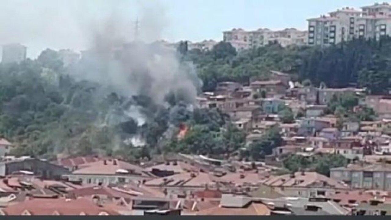 İstanbul Çatalca'da yangın çıktı