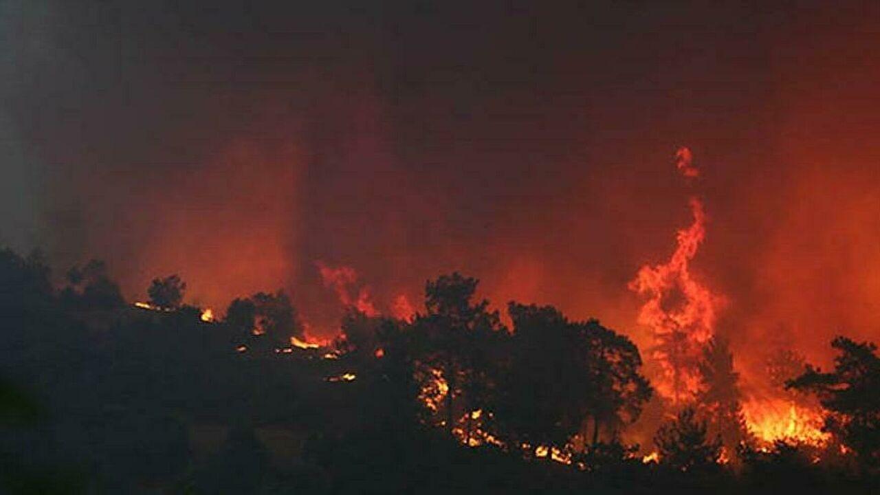 İtalya'daki Monte Catillo Tabiat Parkı'nda yangın