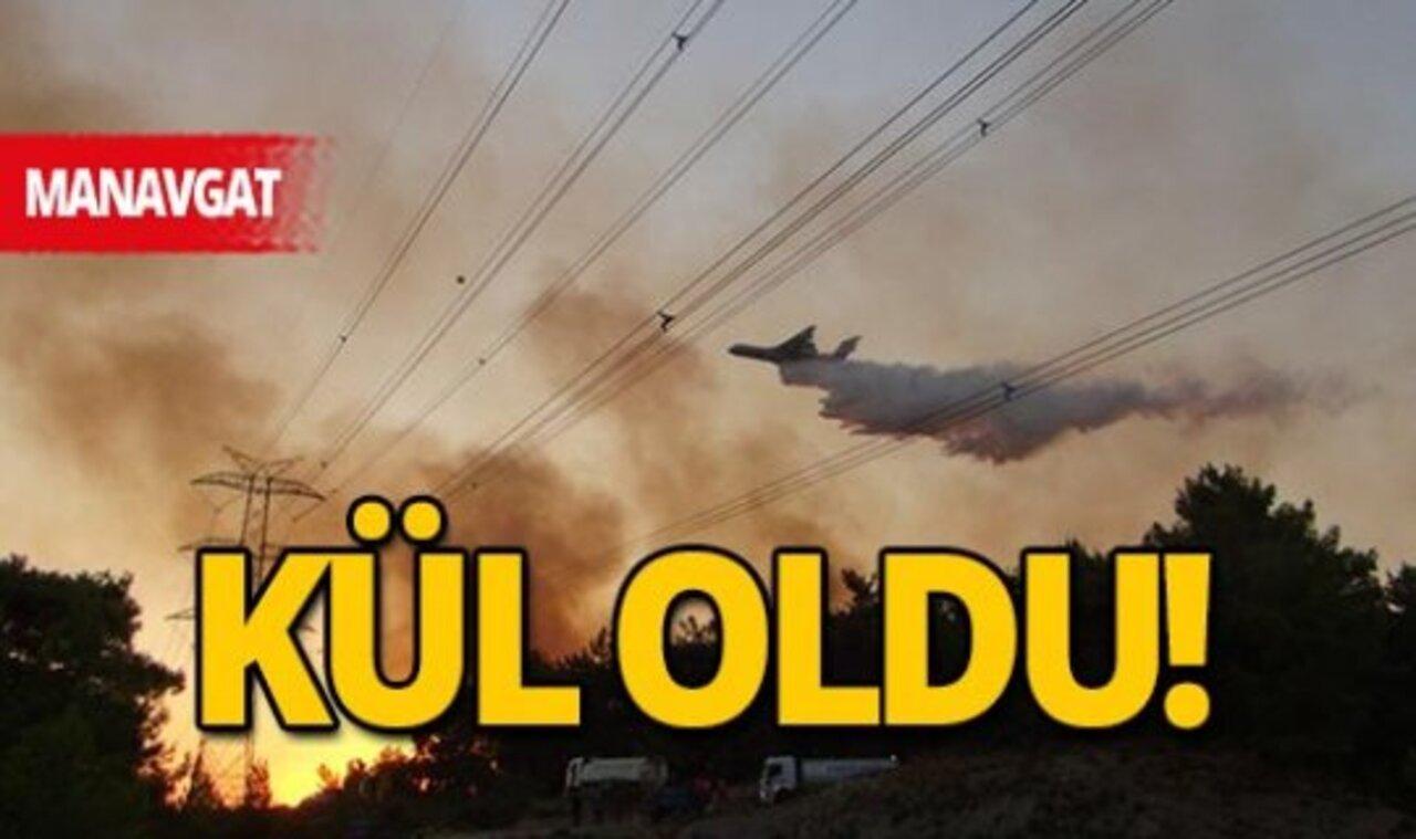 Orman yangınlarının tahribatı 83 bin hektar olarak ölçüldü!