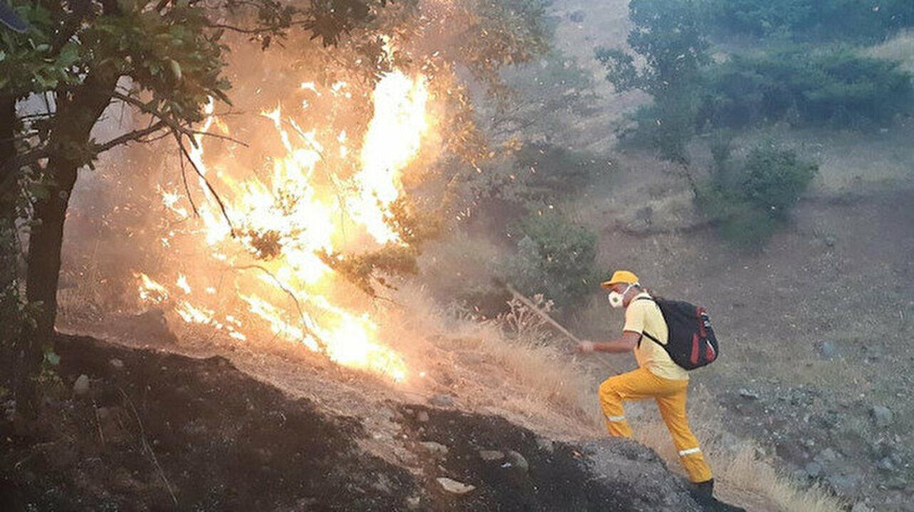 Siirt'te ormanlık alanda yangın
