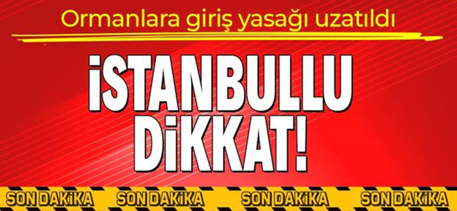 Vali Yerlikaya duyurdu! İstanbul'da ormanlara giriş yasağı 1 ay daha uzatıldı