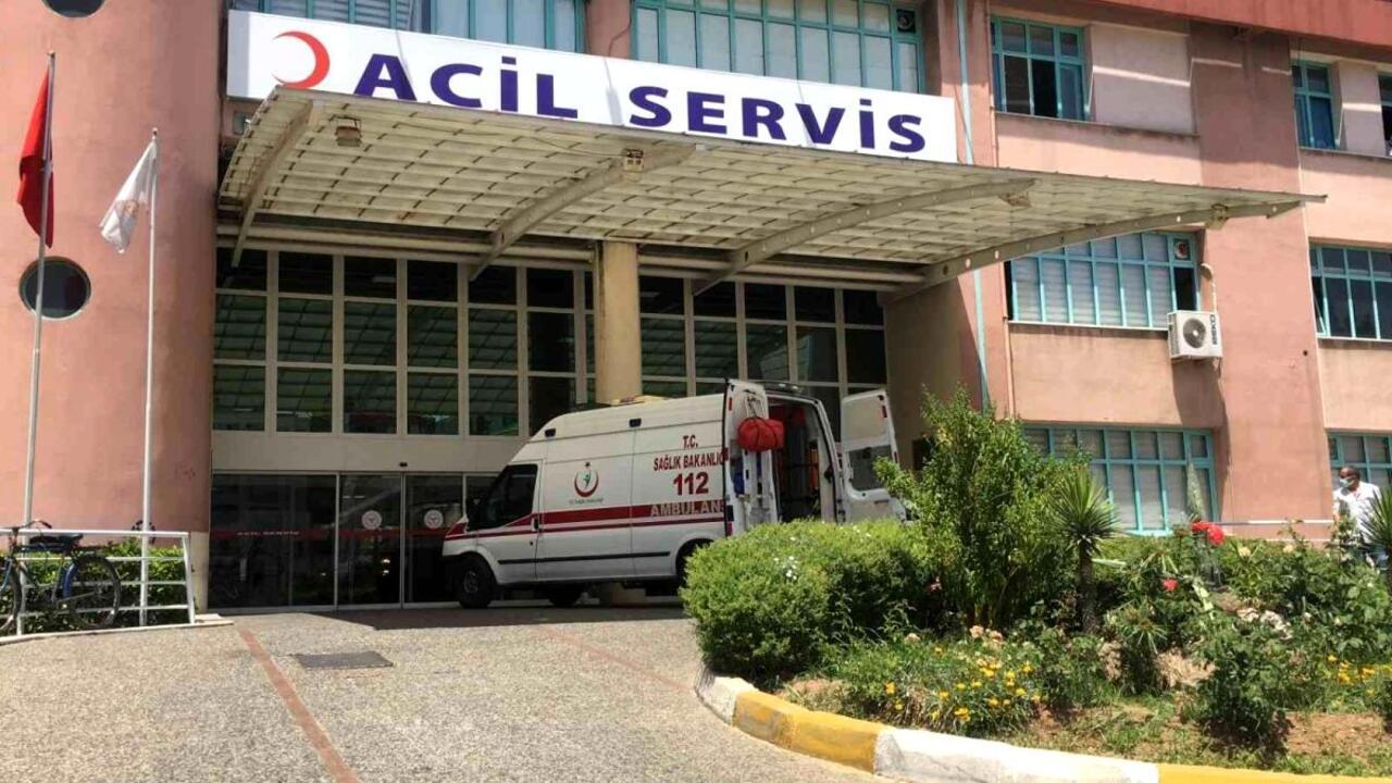 Aydın'da eşeğiyle birlikte uçurumdan yuvarlanan yaşlı adam hastaneye kaldırıldı