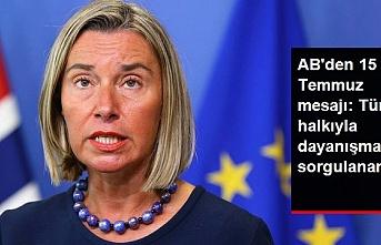 AB temsilcisinden 15 Temmuz darbe açıklaması; Türk halkıyla dayanışmamız sorgulanamaz