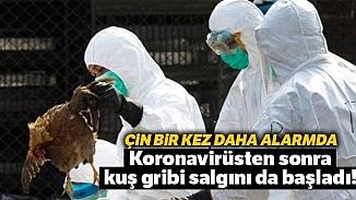 Corona virüsünden sonra kuş gribi tehlikesi! 17 bin kanatlı hayvan itlaf edildi