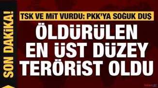 PKK'ya şok! Sözde komite üyesi öldürüldü