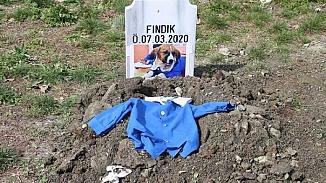Türkiye'nin sevgilisi haline gelen Fındık köpek toprağa verildi
