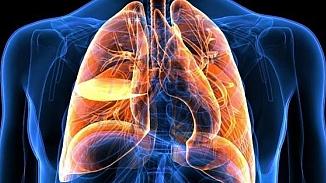 Akciğeri güçlendiren besinler nelerdir? Hangi besinler akciğer enfeksiyonunu engeller?