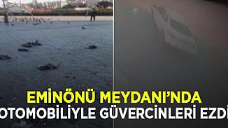 Eminönü'nde dehşet! Aracıyla meydanda yem yiyen güvercinleri ezdi