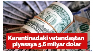 Evde kalan vatandaşlar 5.6 milyar dolar sattı!