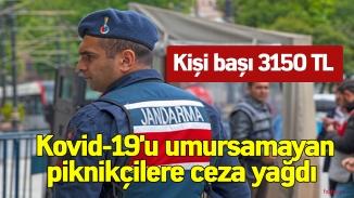 Kovid-19'u umursamayan piknikçilere ceza yağdı! İşte piknik yapmanın cezası