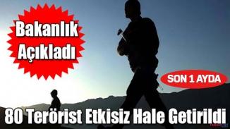 TSK yurt içi ve yurt dışında terörist temizliğine devam ediyor! Son bir ayda 80 terörist etkisiz hale getirildi