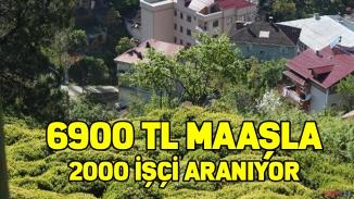 6900 tl maaş var çalışan yok!