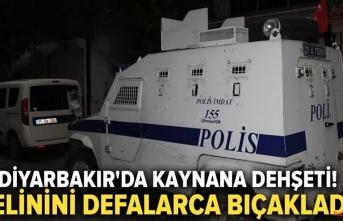 Diyarbakır'da gelin kaynana kavgası hastanede bitti