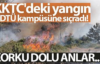 Kıbrıs'ın Tepebaşı bölgesindeki yangın ODTÜ kampüsüne sıçradı, Türkiye destek gönderdi