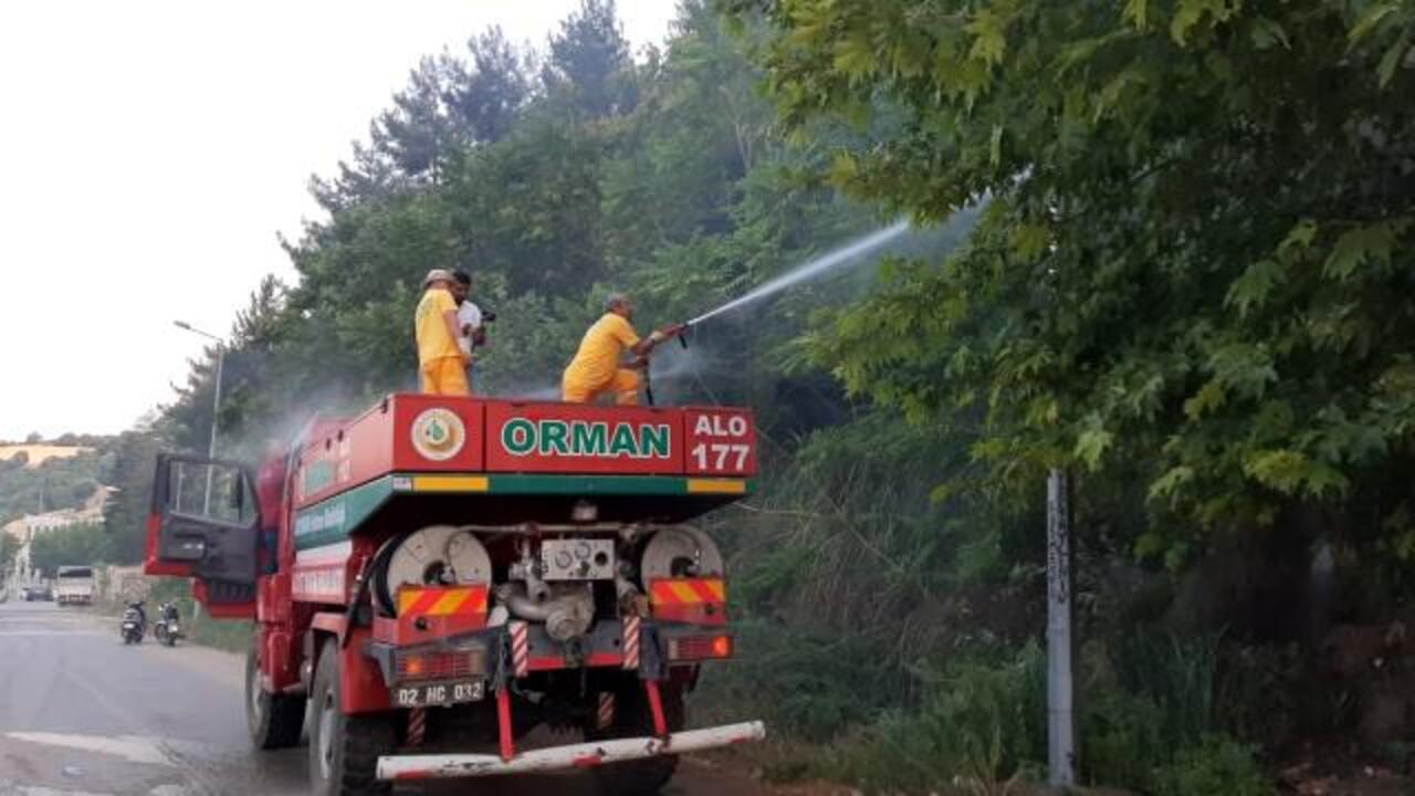 Adıyaman'da izmarit nedeniyle orman yangını!