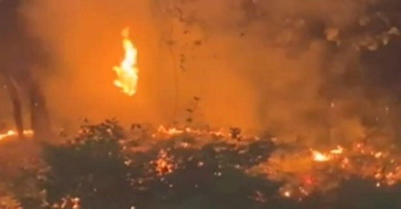 Arnavutköy'de düğünde atılan fişek sonucu yangın!