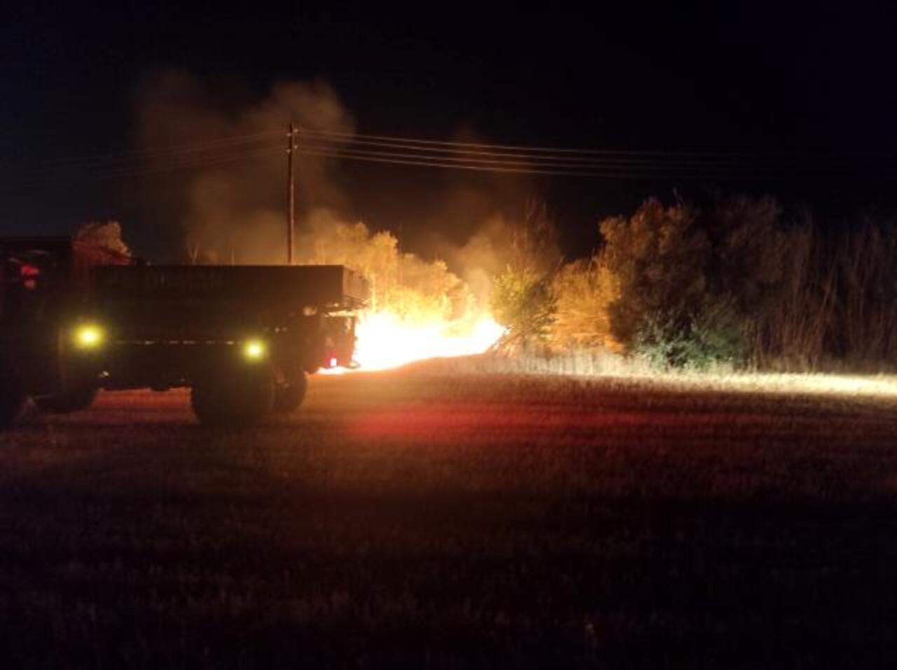 Aydın'da zeytinlik bölgede yangın!