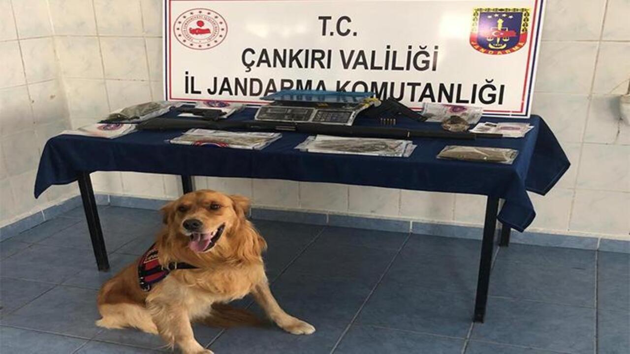 Çankırı'da uyuşturucu operasyonu: 3 kişi tutuklandı