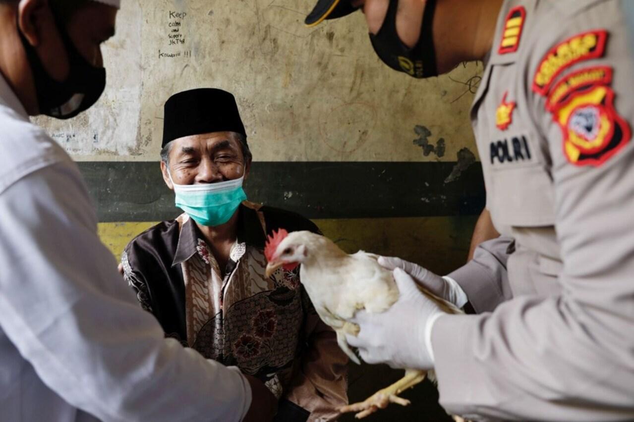İlginç koronavirüs aşısı teşviki! Aşı olana tavuk hediyesi