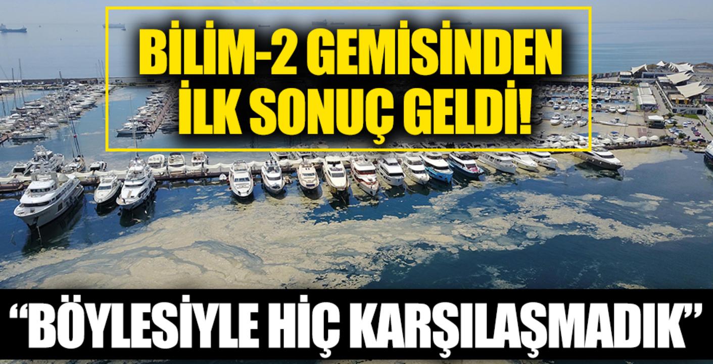 Marmara Denizi'ndeki salya kabusu için bilim insanları sahaya indi!
