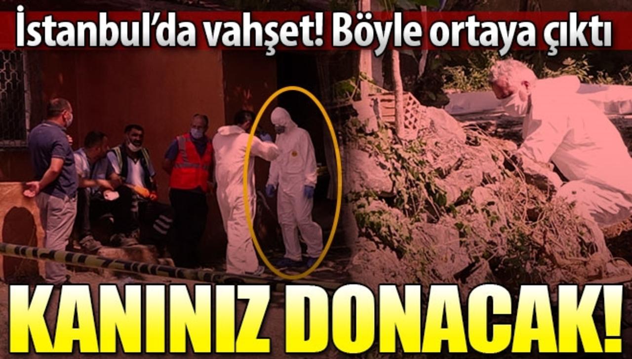 İstanbul'da korkunç cinayet! Önce öldürdüler sonra üzerine beton döktüler..