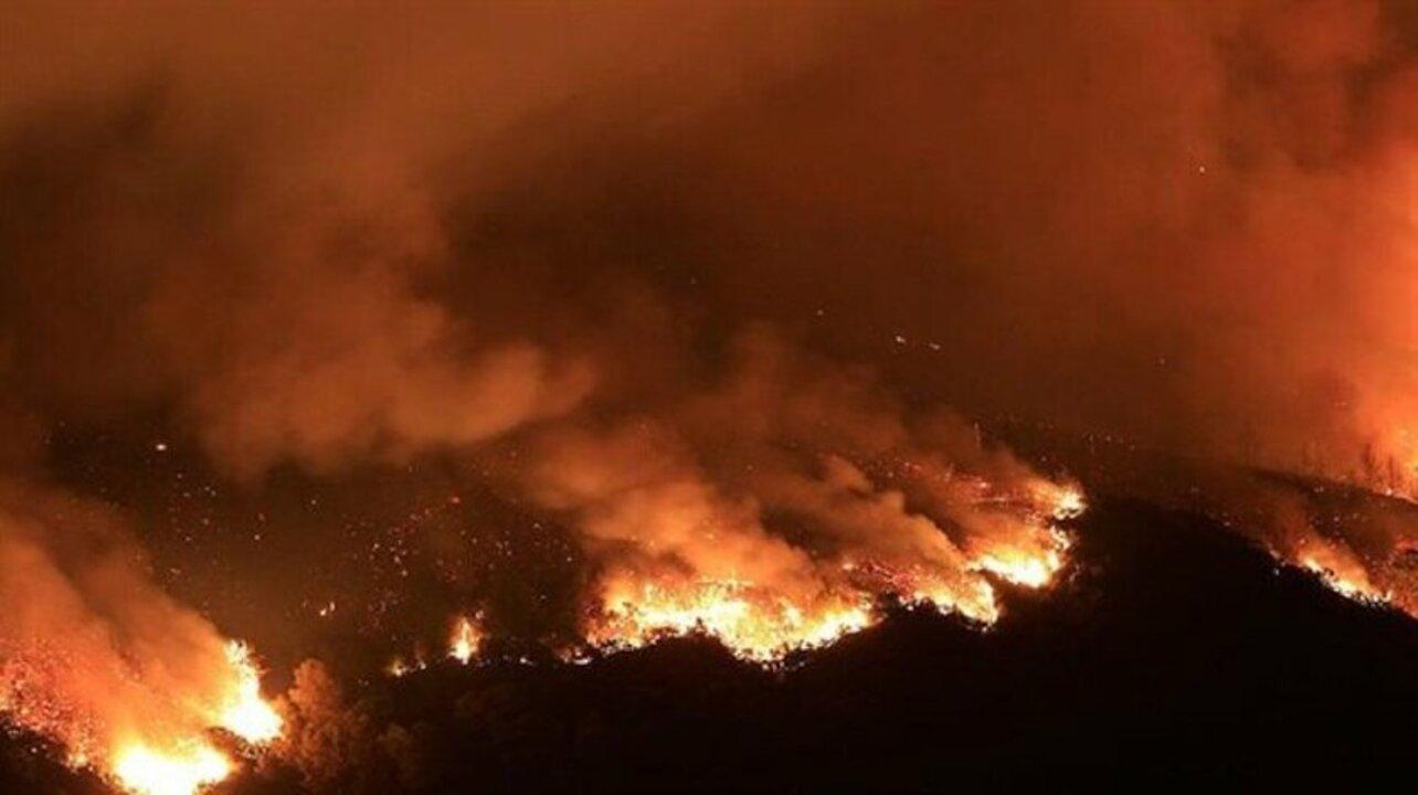 Kanada tarihinin en yüksek sıcaklığını yaşıyor! Yıldırım düşmesi sonucu 136 ormanda yangın çıktı