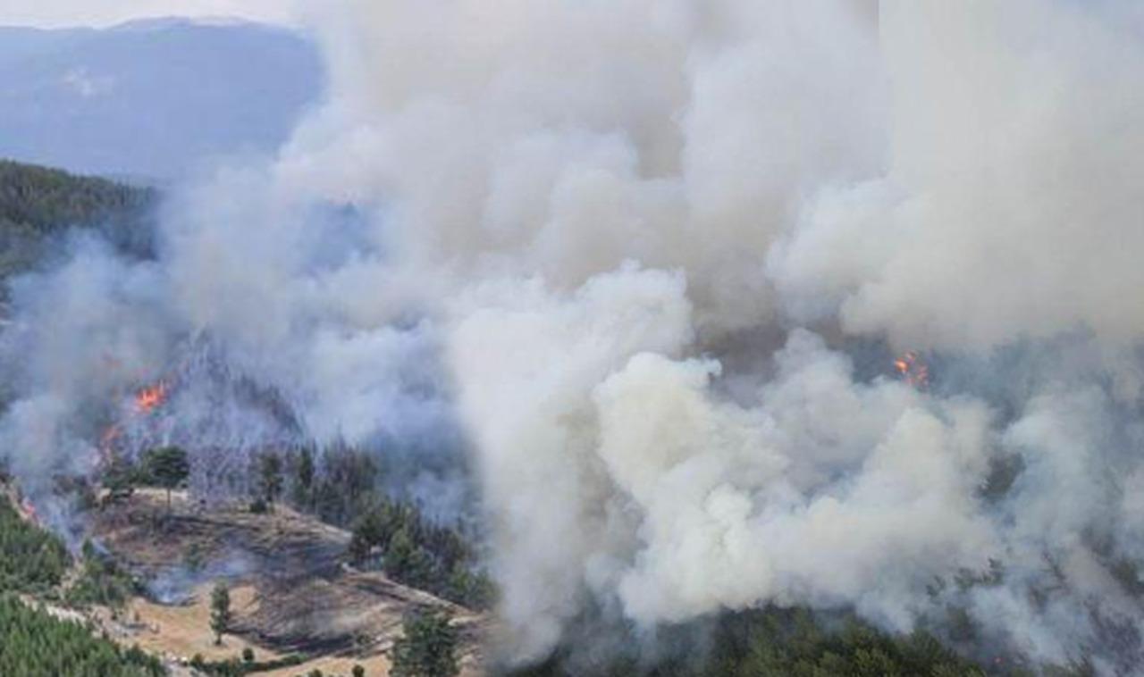 Tarlada anız yakımı sonrasında çıkan yangın ormanlık alana sıçradı