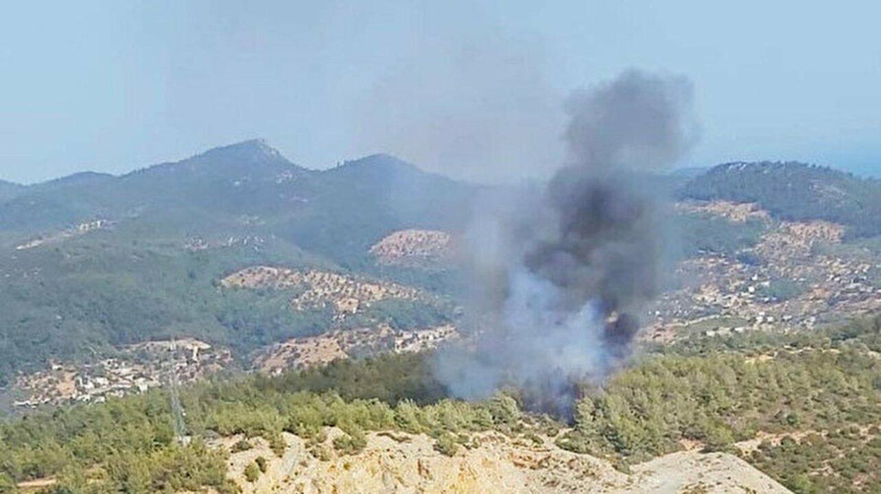 Bodrum'da ormanlık alanda yangın