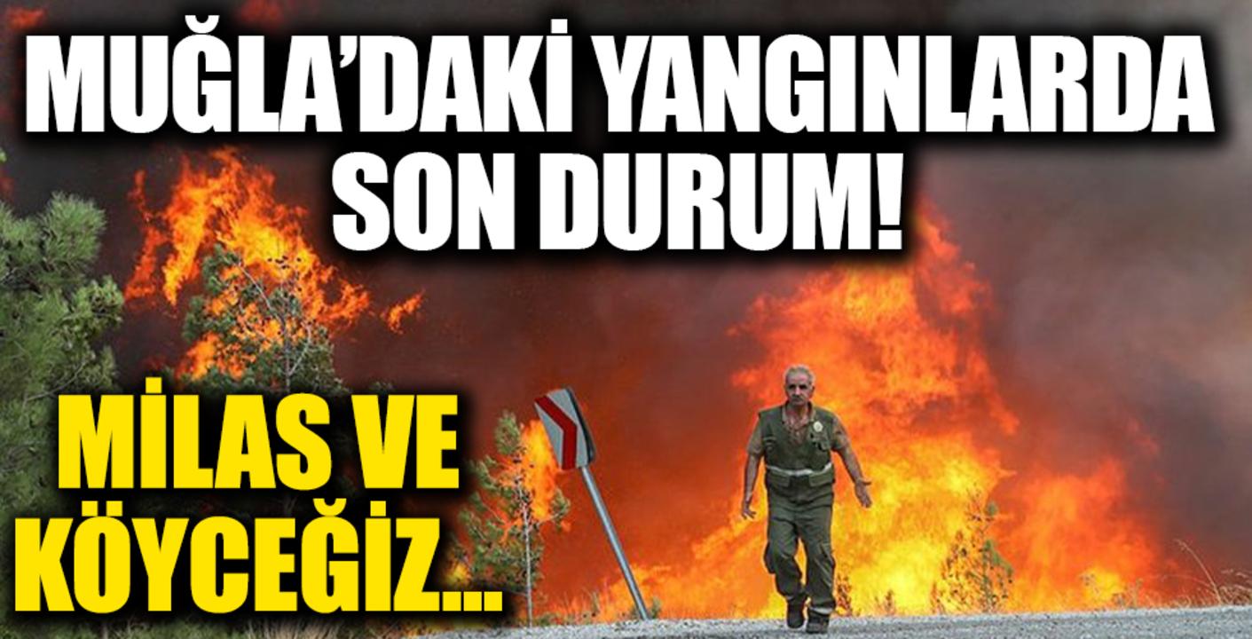 Milas ve Köyceğiz yangınlarında son durum!